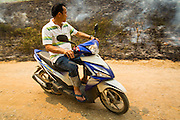 "09 APRIL 2013 - KHUNTAN, LAMPHUN, THAILAND:  A man rides his motorcycle past a grassfire buring out weeds in Khuntan, Lamphun province, Thailand.  The ""burning season,"" which roughly goes from late February to late April, is when farmers in northern Thailand burn the dead grass and last year's stubble out of their fields. The burning creates clouds of smoke that causes breathing problems, reduces visibility and contributes to global warming. The Thai government has banned the burning and is making an effort to control it, but the farmers think it replenishes their soil (they use the ash as fertilizer) and it's cheaper than ploughing the weeds under.     PHOTO BY JACK KURTZ"