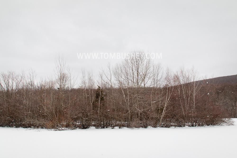 Highland Mills, New York - Snow flurries at Earl Reservoir on March 28, 2015.