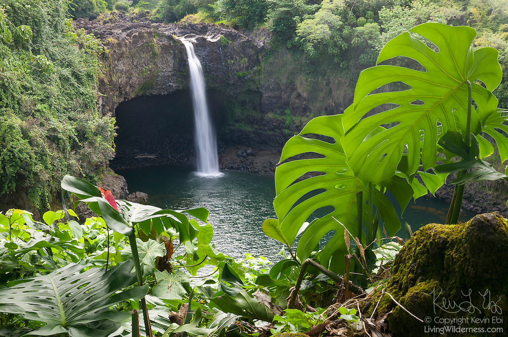 Dense tropical vegetation frames this view of Rainbow Falls, an 80-foot waterfall near Hilo, Hawaii. Legends say that the cave beneath the waterfall was the home of Hina, mother of the demigod Maui.