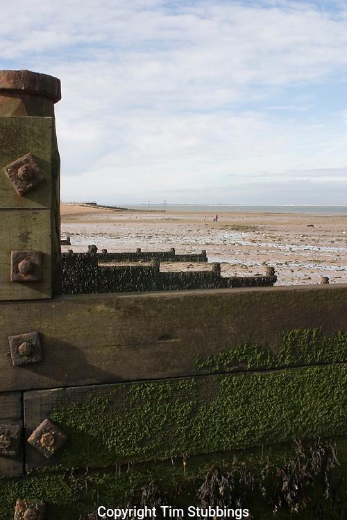 Coastal, beach, sea defence, defense,  groynes, Whitstable,  Kent, England, UK