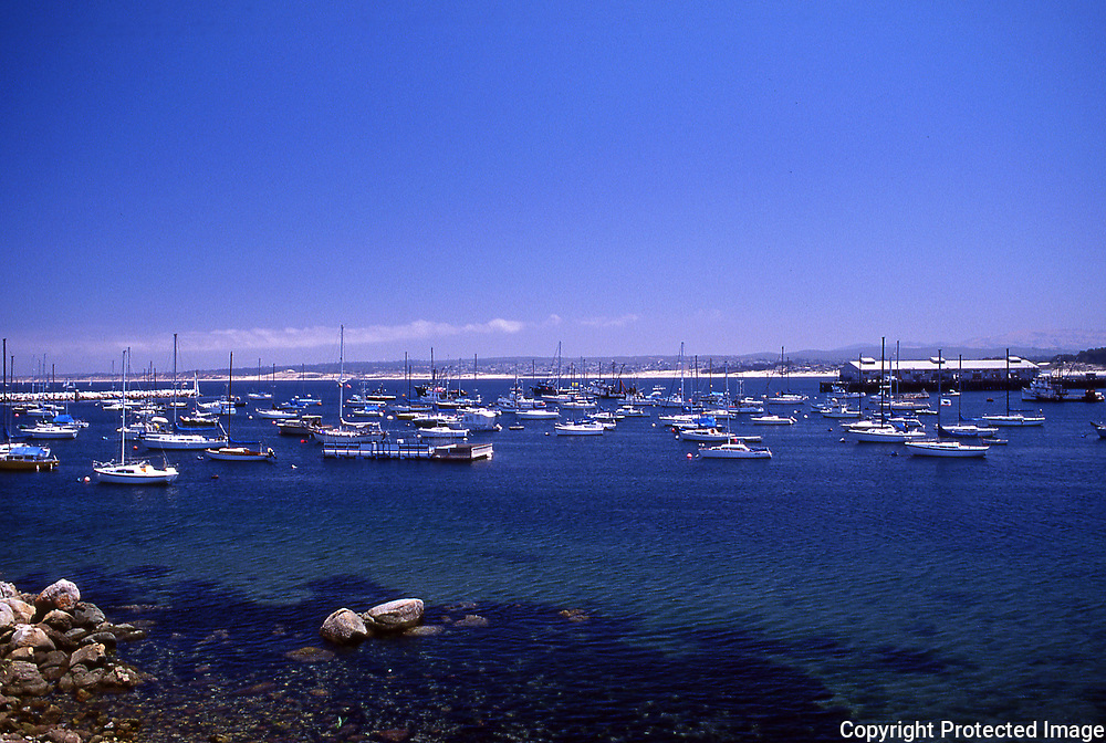 The City of Monterey Harbor with the fishing fleet and Fisherman's Wharf