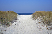 pathway in dune with sea on horizon