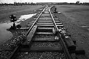 Flowers left on the tracks to commemorate the victims of  the Nazi extermination camp Auschwitz 11 Birkenau,  Poland.