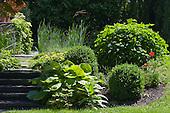 Natural Garden 392