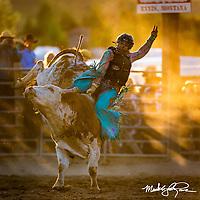 At The Rodeo - Portfolio