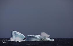 ATLANTIC OCEAN ABOARD ARCTIC SUNRISE 27MAY11 - Iceberg floating off the Labrador coast in the north Atlantic Ocean...jre/Photo by Jiri Rezac / Greenpeace