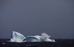 ATLANTIC OCEAN ABOARD ARCTIC SUNRISE 27MAY11 - Iceberg floating off the Labrador coast in the north Atlantic Ocean...jre/Photo by Jiri Rezac / Greenpeace