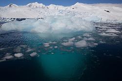 iceberg, Curtis Bay, Antarctica