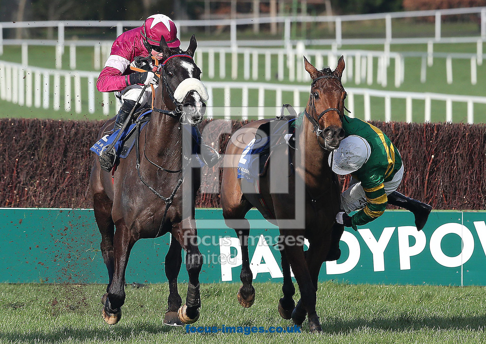 Second placed Don Cossack ridden by Bryan Cooper passes Carlingford Lough as Tony McCoy is unseated pictured during the Dr.PJ Moriarty Novice 'chase  at Leopardstown Racecourse, Leopardstown<br /> Picture by Lorraine O'Sullivan/Focus Images Ltd +353 872341234<br /> 09/02/2014