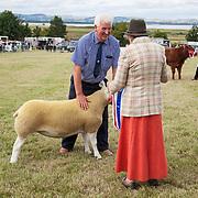CR0002852 Kinross Show. David McKerrow, Northnochnary Farm, Freuchie, with his Champion Sheep Interbreed, Champion Texil, Overall Champion of Show. 11 Aug 2018 © Copyright photograph by Tina Norris. Contact Tina on 07775 593 830 info@tinanorris.co.uk All print sales via Tina Norris. www.tinanorris.co.uk http://tinanorris.photoshelter.com