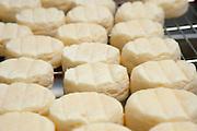 Käse in der Herstellung, Käserei Molkerei Hüttenthal, Mossautal, Odenwald, Naturpark Bergstraße-Odenwald, Hessen, Deutschland   cheese dairy Molkerei Hüttenthal, Mossautal, Odenwald, Hesse, Germany