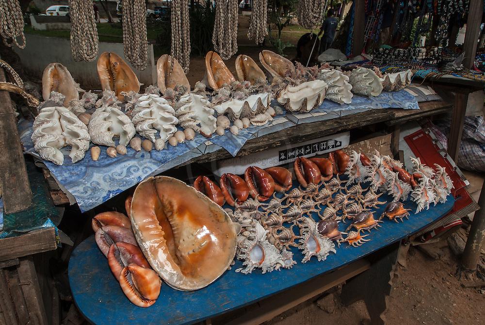 Sea-shells for sale at a Malindi market, Malindi, Kenya