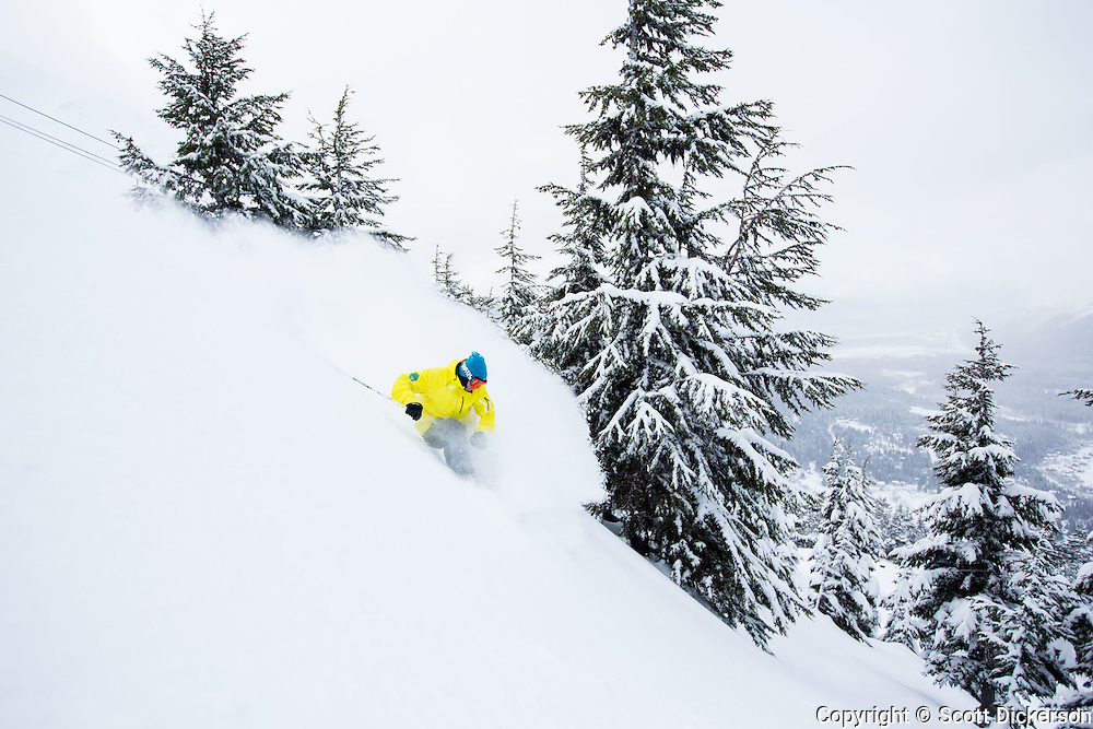Jeff Hoke skiing powder in the trees at Alyeska Resort, Girdwood, Alaska.