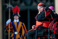 Vatican City, nov 11, 2015, wednesday weekly general audience. In the picture a cardinal and a swiss guard © PIERPAOLO SCAVUZZO