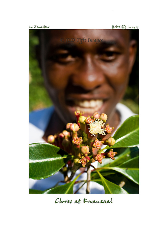 Head shot of a smiling young Tanzanian man holding a branch from a clove tree toward the camera.  The cluster of fresh pinkish colored cloves includes a white blossom and several bright green leaves.