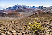 A view looking down into Haleakala Crater, Haleakal National Park, Maui, Hawaii, USA.