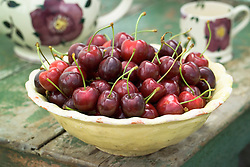 Picked cherries in a cream ceramic bowl