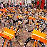 NLD/Den Haag/20180323 - Huldiging Olympische en Paralympische medaillewinnaars, Oranje fietsen