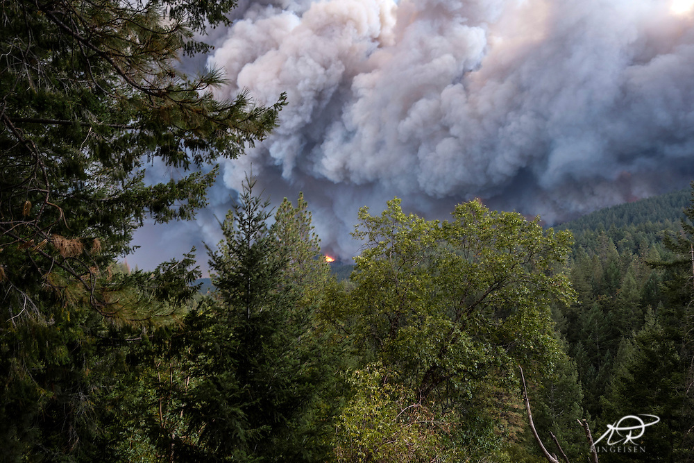 September 12, 2015 - Lake County, California, Flames towering over mature trees as the Valley Fire races through Boggs Mountain State Forest near Loch Lomond (Kai Ringeisen / Polaris)