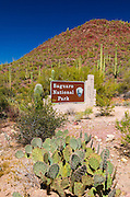 Entrance sign, Saguaro National Park (Tucson Mountain District), Arizona USA