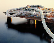 The Rope, Nords Wharf, Lake Macquarie, NSW, Australia