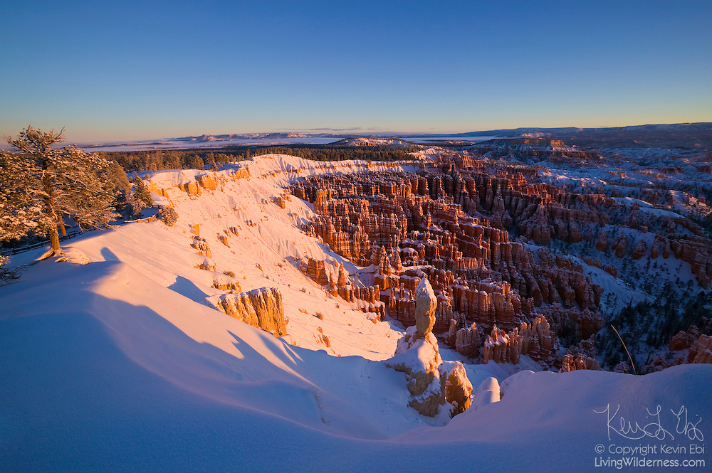 Hundreds of hoodoos in the Bryce Canyon amphitheater in Utah are covered in fresh snow after a heavy winter snow storm. Some of the hoodoos are 200 feet tall.