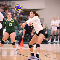 4th year outside hitter Ashlee Sandiford (1) of the Regina Cougars in action during Women's Volleyball home game on November 17 at Centre for Kinesiology, Health and Sport. Credit: Arthur Ward/Arthur Images