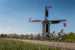 Peloton with riders of Team Dimension Data (RSA) on the Molendijk at Batenburg, stage 2 from Arnhem to Nijmegen running 190 km of the 99th Giro d'Italia (UCI WorldTour), The Netherlands, 7 May 2016. Photo by Pim Nijland / PelotonPhotos.com | All photos usage must carry mandatory copyright credit (Peloton Photos | Pim Nijland)