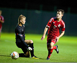 NEWPORT, WALES - Thursday, September 25, 2014: Wales' Liam Cullen round France's goalkeeper Thomas Chesneau to score the equalising goal during the Under-16's International Friendly match at Dragon Park. (Pic by David Rawcliffe/Propaganda)