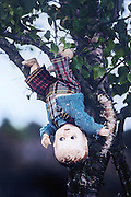 an old doll is hanging from a tree