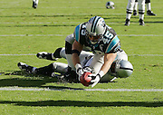 CHARLOTTE, NC - NOVEMBER 7:  Fullback Brad Hoover #45 of the Carolina Panthers dives into the end zone and scores a touchdown on a 16 yard pass play from quarterback Jake Delhomme in the third quarter against the Oakland Raiders at Bank of America Stadium on November 7, 2004 in Charlotte, North Carolina. The Raiders defeated the Panthers 27-24. ©Paul Anthony Spinelli  *** Local Caption *** Brad Hoover