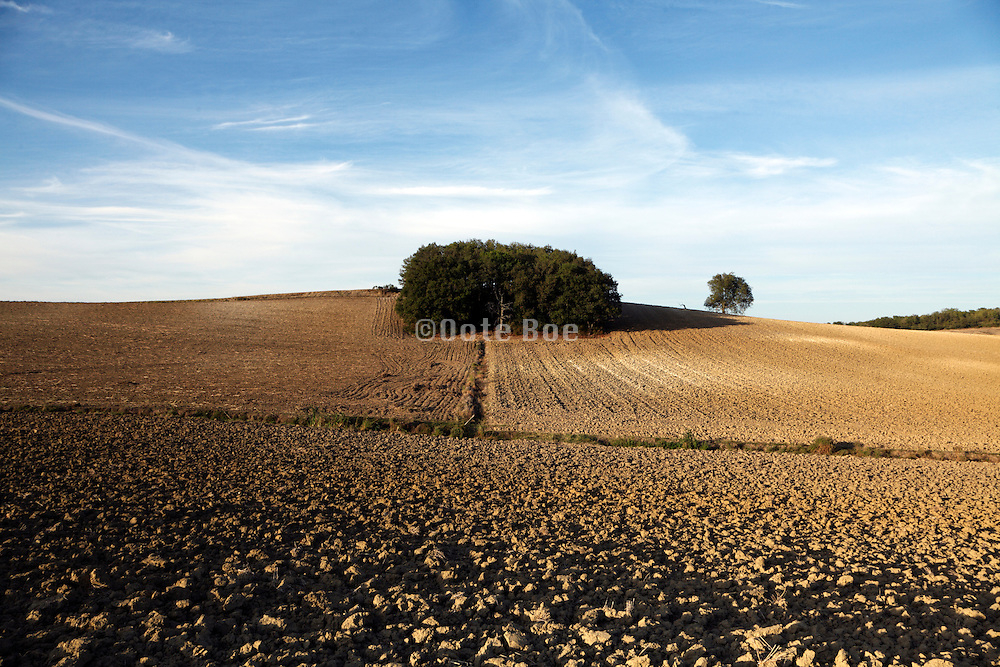 agricultural fields in the Languedoc in France in late autumn season