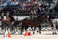 Chardon Bram, NED, Enrico, Floriano, Freddy, Generaal<br /> World Equestrian Games - Tryon 2018<br /> © Hippo Foto - Dirk Caremans<br /> 23/09/2018