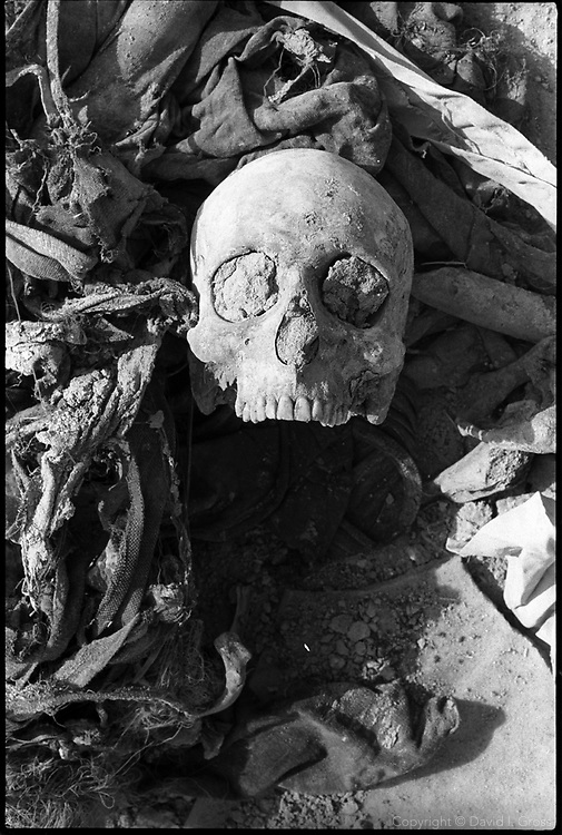 A skull at a mass grave near Hillah, Iraq, lies in a pile of clothing. Some remains from the site were recovered by local people and left in piles.