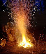 Evening Bonefire in winter
