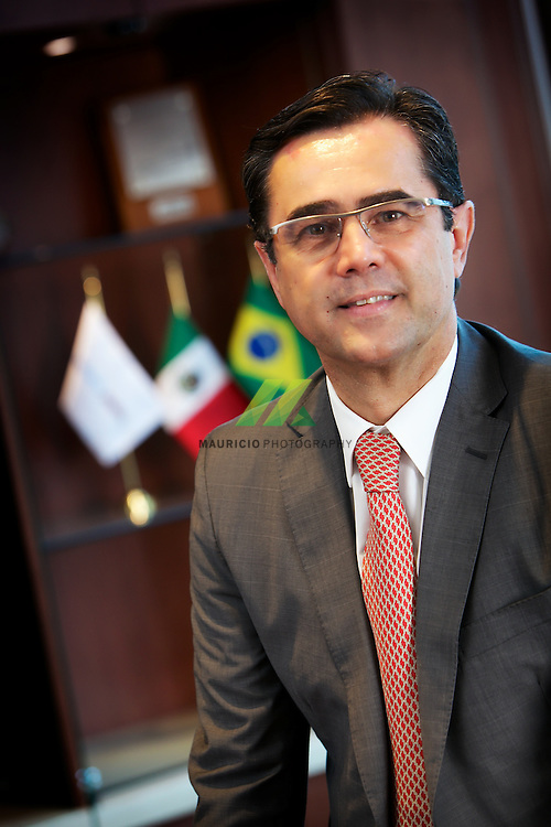 Responsable for the implementation of a Petrochemical Complex in México, that will produce 1 million tons of ethylene and polyethylenes. Total investment will be aprox, US$ 3,1 billion. Braskem Idesa is a JV between Braskem (65%) and Idsesa (35%).