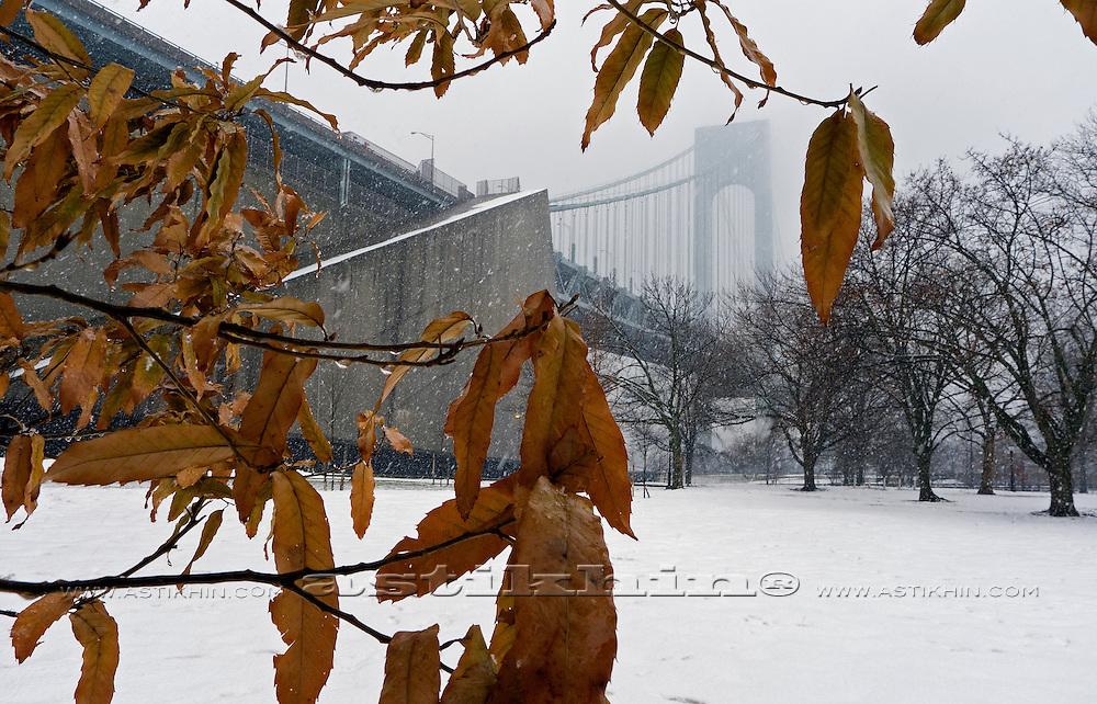 Winter in Brooklyn.