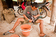 10 APRIL 2010 - PLA PAK, NAKHON PHANOM, THAILAND: A man cleans his fighting cock before it enters a pit in rural Thailand. Cockfighting is enormously popular in rural Thailand. A big fight can bring the ring operator as much as 200,000 Thai Baht (about $6,000 US), a large sum of money in rural Thailand. Fighting cocks live for about 10 years and only fight for 2nd and 3rd years of their lives. Most have only four fights per year. Fighting cocks in Thailand do not wear the spurs or razor blades that they do in some countries and most times the winner is based on which rooster stops fighting or tires first rather than which is the most severely injured. Although gambling is illegal in Thailand, many times fight promoters are able to get an exemption to the gambling laws and a lot of money is wagered on the fights. Many small rural communities have at least one cockfighting arena.   PHOTO BY JACK KURTZ
