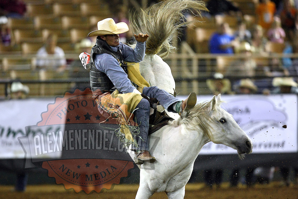 Matt Bartsch of Warwick, MD rides bareback during the 129th performance of the PRCA Silver Spurs Rodeo at the Silver Spurs Arena   on Friday, June 1, 2012 in Kissimmee, Florida. (AP Photo/Alex Menendez) Silver Spurs rodeo action in Kissimee, Florida. PRCA rodeo event in Florida. The 129th annual running of the cowboy event.