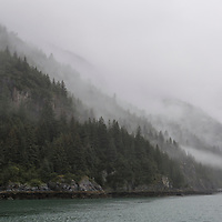 An island in Glacier Bay National Park, Alaska, blanketed by fog during the early morning hours.