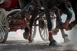 Gerts Schrijvers, (BEL), El Fiero, Giganta A, Onyx, Replay, Victor K - Driving Marathon - Alltech FEI World Equestrian Games™ 2014 - Normandy, France.<br /> © Hippo Foto Team - Becky Stroud<br /> 06/09/2014