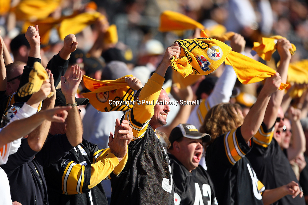 Pittsburgh Steelers fans scream and wave terrible towels after the Steelers score a touchdown during the NFL football game against the Minnesota Vikings, October 25, 2009 in Pittsburgh, Pennsylvania. The Steelers won the game 27-17. (©Paul Anthony Spinelli)