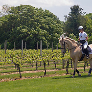 Spring Vineyard Ride 2008