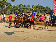 17 FEBRUARY 2018 - BAN LOT, PHETCHABURI, THAILAND: Teams push ox carts to the starting line in Ban Lat, a community about three hours south of Bangkok. The ox cart races are almost 100 years old, and date back to the reign of King Rama V. The races are run on a 100 meter long straightaway course.   PHOTO BY JACK KURTZ