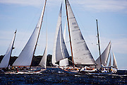 Bernice, Ticonderoga, and Nellie sailing in the Indian Harbor Classic Yacht Regatta.