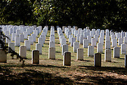 UNITED STATES-WASHINGTON DC-Arlington National Cemetery. PHOTO: GERRIT DE HEUS.VERENIGDE STATEN-WASHINGTON DC-Arlington National Cemetery.  PHOTO  GERRIT DE HEUS