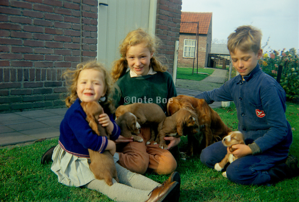 Children posing with puppy dogs Golden Retrievers.
