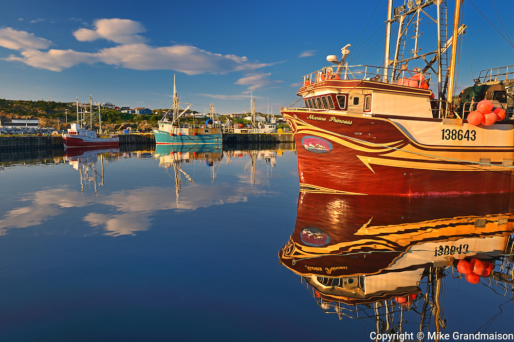Fishing boats in coastal fishing village off the Atlantic Ocean<br /> La Scie<br /> Newfoundland & Labrador<br /> Canada