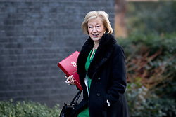 © Licensed to London News Pictures. 06/02/2018. London, UK. Leader of the House of Commons Andrea Leadsom arriving in Downing Street to attend a Cabinet meeting this morning. Leadsom is wearing symbolic green and purple colours, as today is the 100th anniversary of women's right to vote.Photo credit : Tom Nicholson/LNP