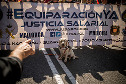 September 29, 2018 - Barcelona, Catalonia, Spain - A police dog attends a march by Spanish police in Barcelona. Members and supporters of Spanish police Guardia Civil and Policia Nacional marched by Barcelona streets demanding salary improvements and in tribute to the participation against the Catalan referendum of independence a year ago. (Credit Image: © Jordi Boixareu/ZUMA Wire)